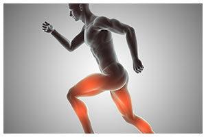 Fisioterapia, Osteopatia, Posturologia e Ortopedia per la cura dei dolori dei muscoli e delle articolazioni, lombalgie, sciatalgie presso Poliambulatorio Ferrario Sesto San Giovanni